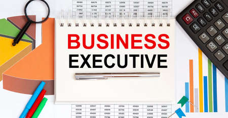 Notepad with text BUSINESS EXECUTIVE on the business charts and pen and charts