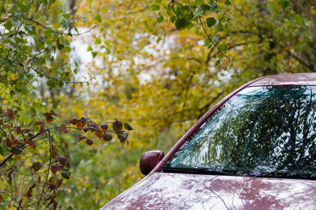 Red car stay on beautiful autumn forest background Stock Photo