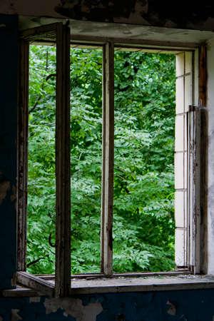 Old window in swimming pool building ruin