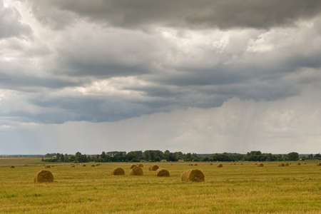 Autumn field with dry grass rolls. Dramatic rainy sky with clouds