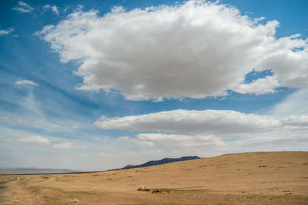 Mongolian wild steppe with mountains on skyline. Cloudy sky