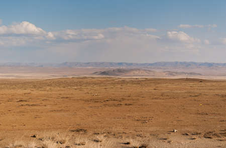 Mongolian wild steppe with mountains on horizon. Cloudy sky