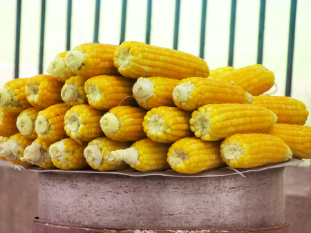 south india: Pattern of steamed Maize selling in South India,South Asia. Stock Photo