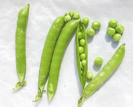 vitamines: Green Peas and pea fruit the legume on white background.Its  a winter food,edible raw,rich in vitamines,good foor health,eye and teeth.Photo taken on 31st January 2016.