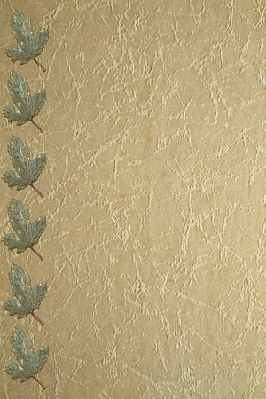books on a wooden surface: Metallic grape leaves on old paper grung background Stock Photo