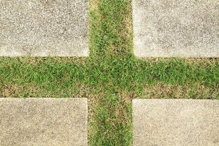 Concrete floor with green grass in cross shaped  photo