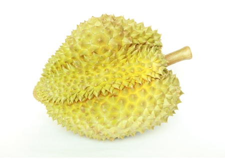 Durian friut isolated on white background  Stock Photo - 13487670