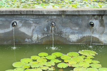 sewer water: Water flow from water pipe to the lake