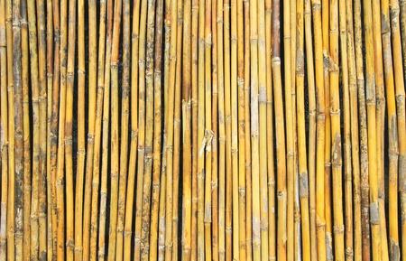 Bamboo wall background Stock Photo - 15943934
