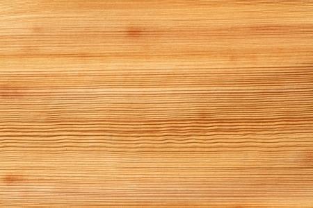 stria: Texture of palm bark