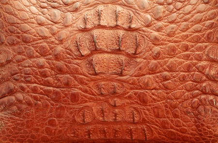 Red leather texture Stock Photo - 18602505
