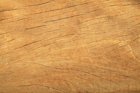 Natural wooden texture and background  photo