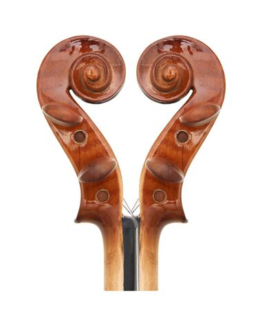 peg: Violin peg and scroll, isolated on white background.