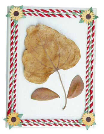 dried leaf: Top view of gift box decorated with colorful ropes and dried leaf attached Stock Photo