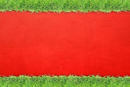 grass border: Green grass border on red cement wall
