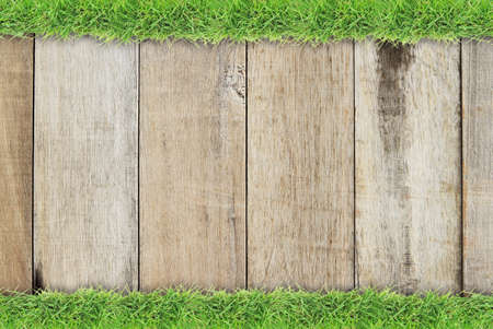 grass border: Green grass border on natural wood background