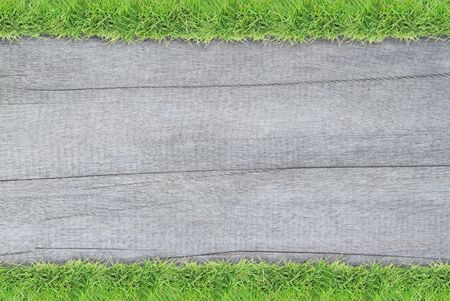 grass border: Green grass border on white wood background