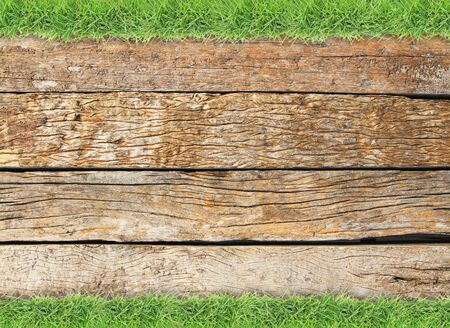 grass border: Green grass border on old wood background Stock Photo