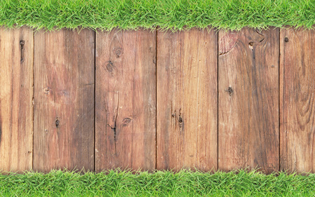 wooden panel: Green grass border on old wood background Stock Photo