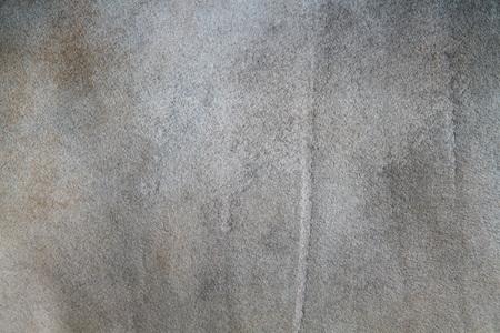 cow skin: Cow skin textured