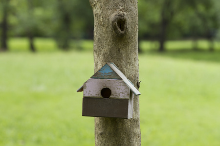 Bird house nesting-box hang on tree trunk Banque d'images