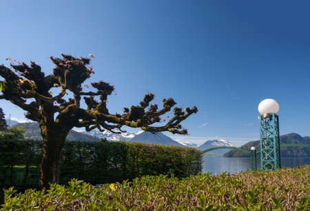 View of park at Lucerne lake shore with swiss alps in spring, Switzerland