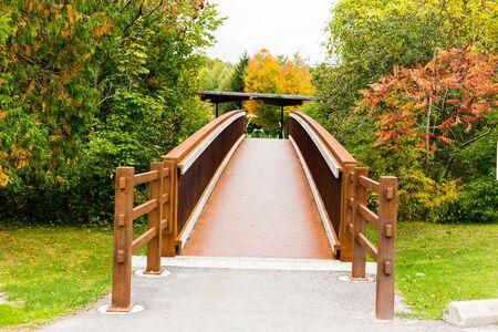 riverside trees: A small steel bridge cross a creek in forest. Stock Photo