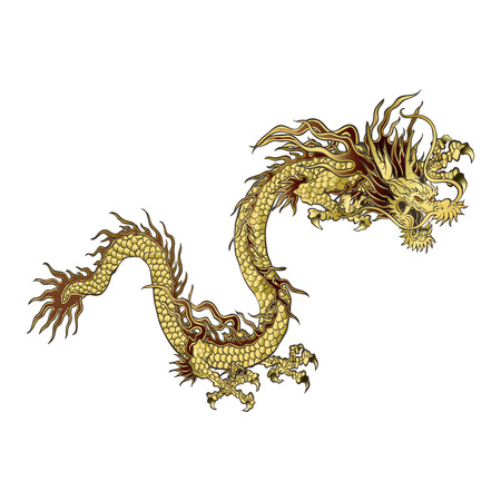 vector illustration golden Chinese dragon, a traditional design, isolated object Çizim