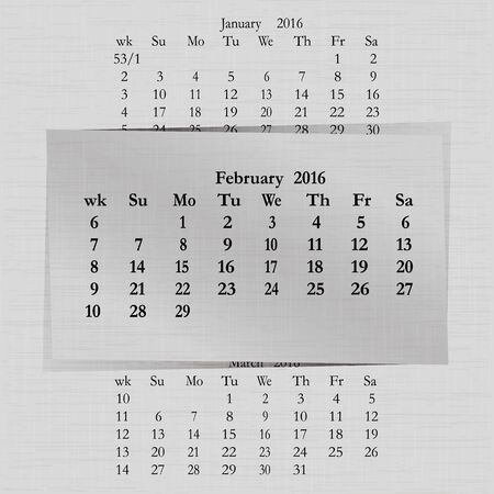 event planner: Vector illustration of a calendar month for 2016 pages February, against the background of the previous month and next month. Week starts on Sunday. The image can be applied to any image.