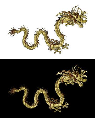 dragones: Ilustraci�n tradicional china del drag�n del oro en un fondo negro y un fondo blanco. Objeto aislado. Dise�o de la plantilla es adecuada para cualquier ilustraci�n. Vectores