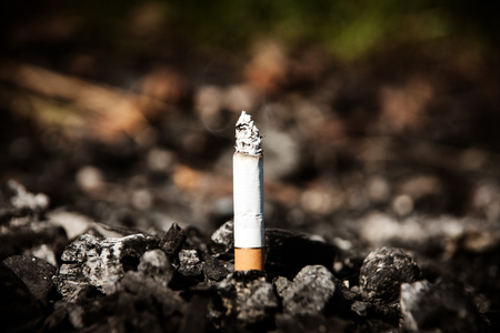 Close-up of a lighted cigarette with ash in the burnt coals. Stock Photo