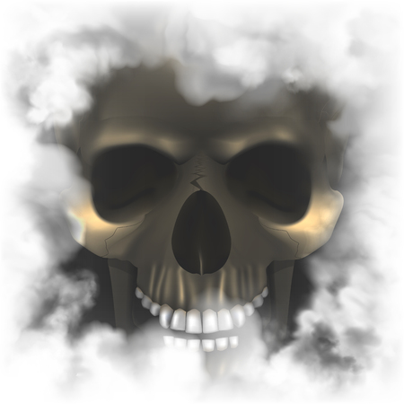 Realistic skull in a smoky frame