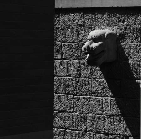 abstracted: Dragon head