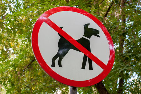 City black-red-white round sign of dog walking prohibited Banque d'images - 99159719