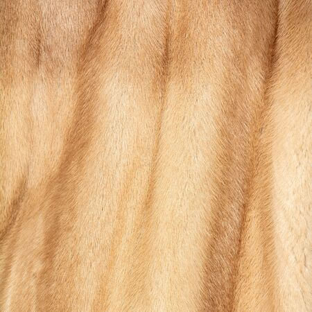 The texture of natural spotted red and beige and brown fur with beautiful folds Stock fotó - 126528749