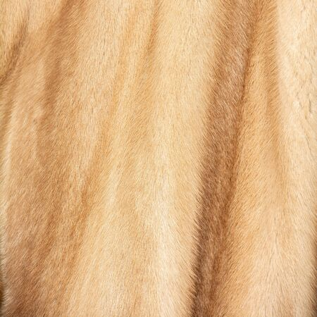 The texture of natural spotted red and beige and brown fur with beautiful folds