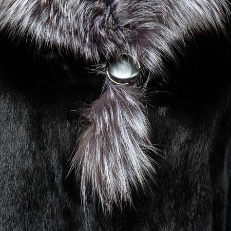 Texture of natural black shiny fur with a light fluffy collar Stock fotó