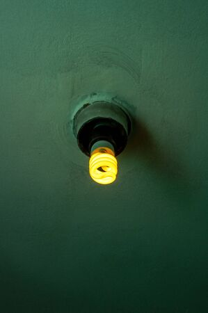 Dim energy efficient fluorescent lamp on a dark green ceiling