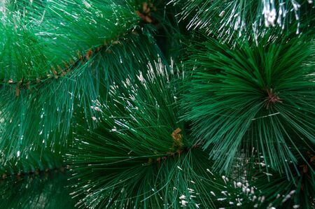 Beautiful artificial Christmas tree with fluffy green branches and white hoarfrost on needles closeup
