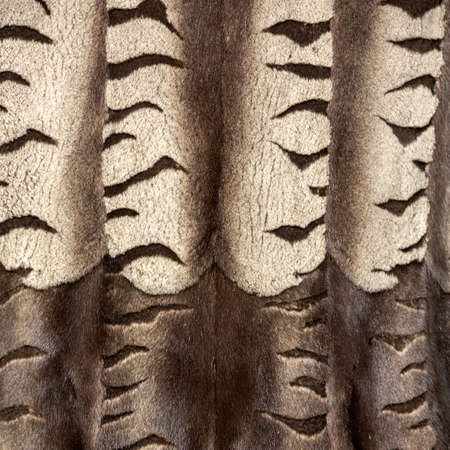 The texture of the fur hangs vertically in beautiful folds in waves with horizontal brown stripes