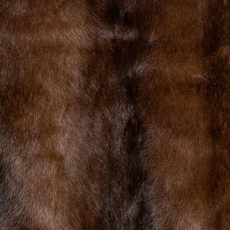 Fur texture brown, shaggy and fluffy, iridescent, shiny closeup