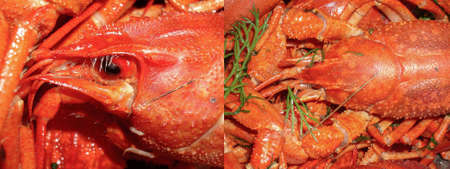 Red boiled crayfish close up for article illustration for food preparation and snacks. Collage of two photos Standard-Bild