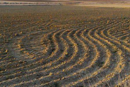 Ploughing furrows in a farmland. Texture Banco de Imagens