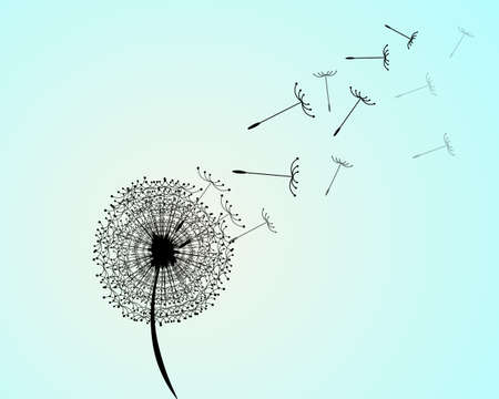 Wind blew on a dandelion. A vector illustration of a dandelion against the background of the blue sky.
