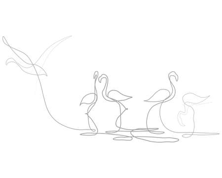 Flamingo one line. Vector illustration. Continuous line. White background