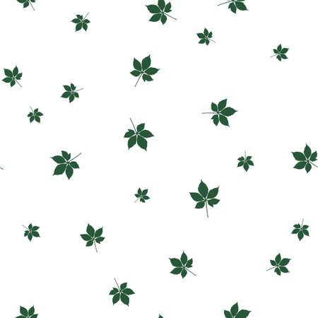 Chestnut leaf green pattern seamless.  illustration. Isolated white background.