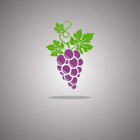 Grapes on a gray background with a gradient. Vector illustration.