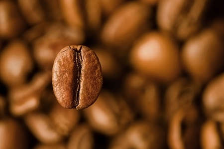baked beans: Closeup view of coffee beans with one in focus Stock Photo