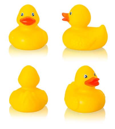 pato de hule: Pato de goma del juguete aislado en el fondo blanco