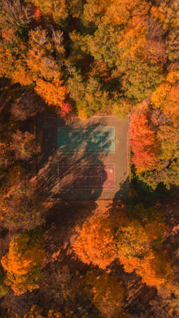 top view of a tennis court in autumn forest. Fall colors